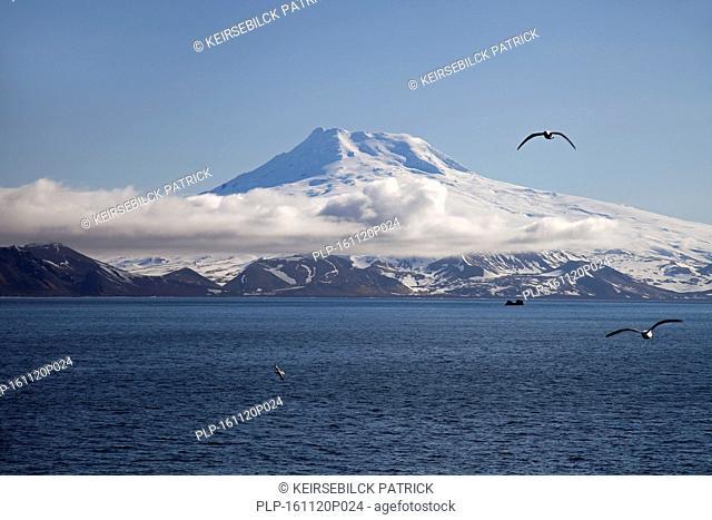 Snow covered Beerenberg volcano ( 2,277m) on Jan Mayen, volcanic island in the Arctic Ocean in spring