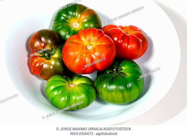 Red and green tomatoes on a white bowl