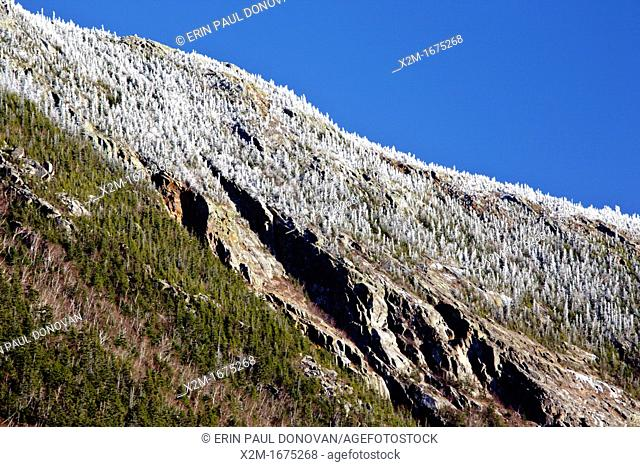 The cliffs of Mount Webster from the Mt Willard Section House site along the old Maine Central Railroad in Crawford Notch State Park of the White Mountains