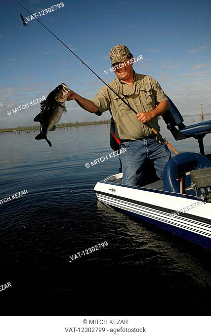 Bass Fisherman With Fish On Boat