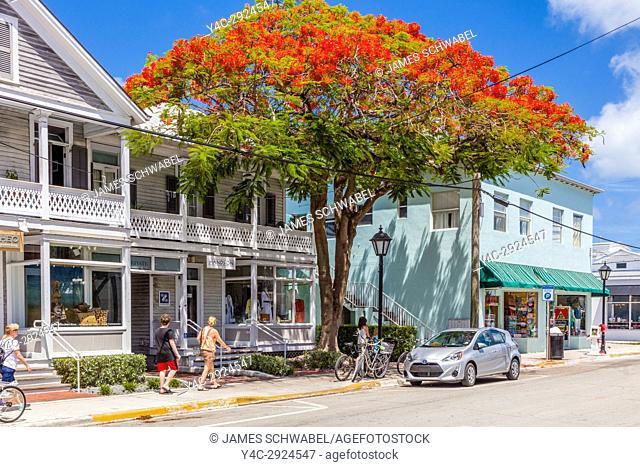 Duval Street in Key West Florida