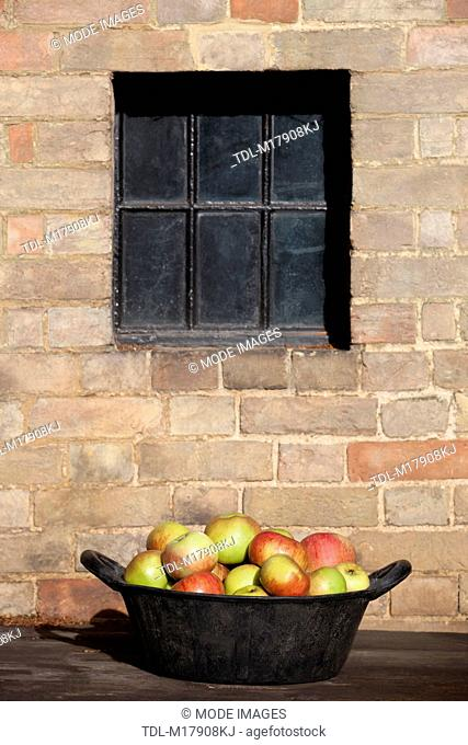 A bucket of ripe apples on a wooden bench
