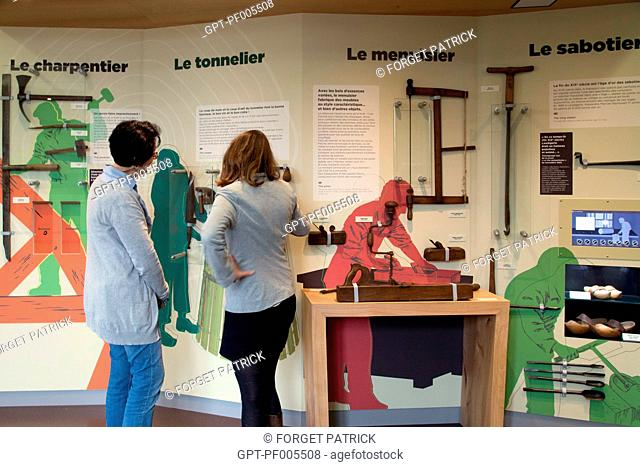 INTERPRETATION CENTER OF THE FOREST AND MAN, CHATEAU OF SENONCHES (28), FRANCE