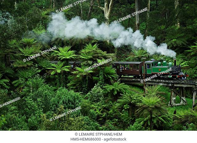 Australia, Victoria, Belgrave, the famous Puffing Billy, a stream train crossing the Dandenongs Ranges