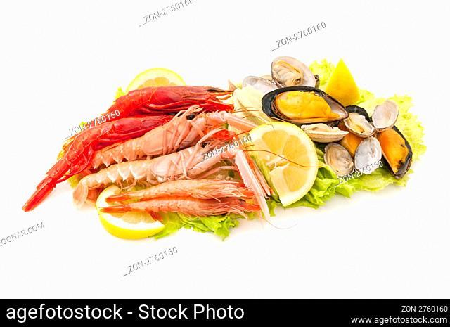 variety of freshly caught seafood on white background