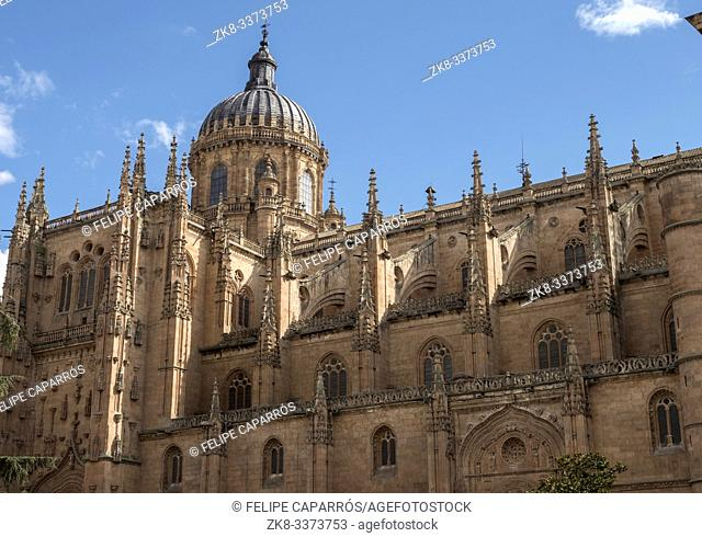 Salamanca, España - August 18, 2019: New Cathedral (Catedral Nueva), One Of The Two Cathedrals Of Salamanca, Spain