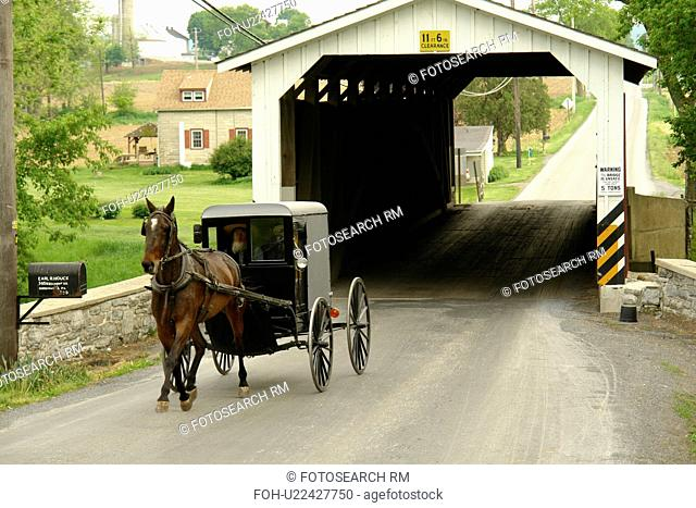 Gap, PA, Pennsylvania, Pennsylvania Dutch Country, Amish, horse and buggy, road, covered bridge