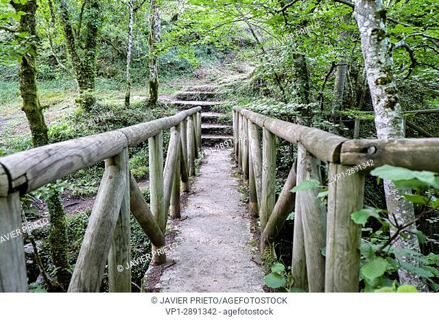 Wooden walkways next to the uprising and sink of Fuente Santiago. Natural monument of Monte Santiago. A natural space. Province of Burgos