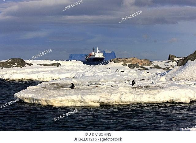 Expedition Ship, MS Ortelius, Antarctica, Weddell Sea, Expedition in Antarctica