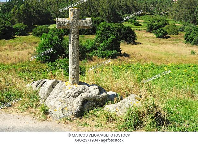 The snake's stone. A winged snake carved in a stone, probably pre-roman time. Ponteceso, Galicia, Spain