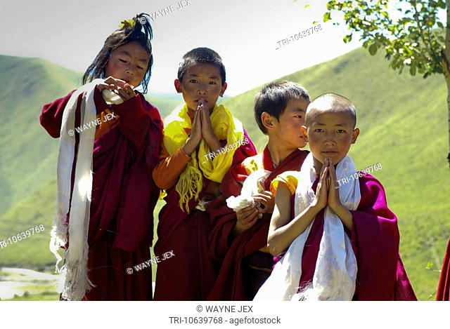 Young monk students at the monastery school of Katog Mardo Tashi Choling in Tibet China