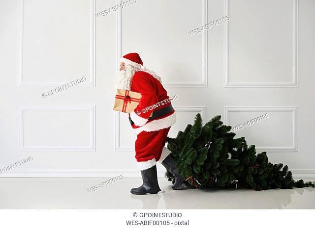Santa Claus with Christmas tree and present