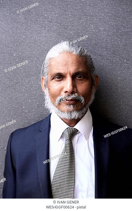 Portrait of senior businessman with grey hair and beard wearing suit and tie