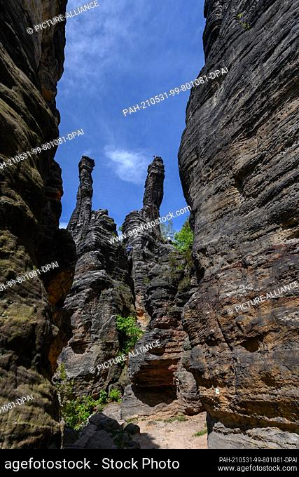 24 May 2021, Saxony, Bielatal: View of the Great Hercules Column and the Small Hercules Column in the Biela Valley in Saxon Switzerland