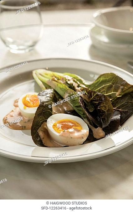 Hard-boiled eggs with lettuce