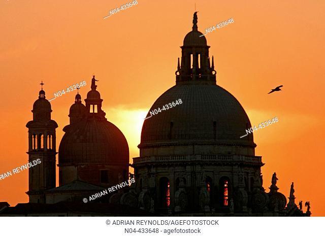 Church of Santa Maria della Salute at sunset, Venice. Veneto, Italy