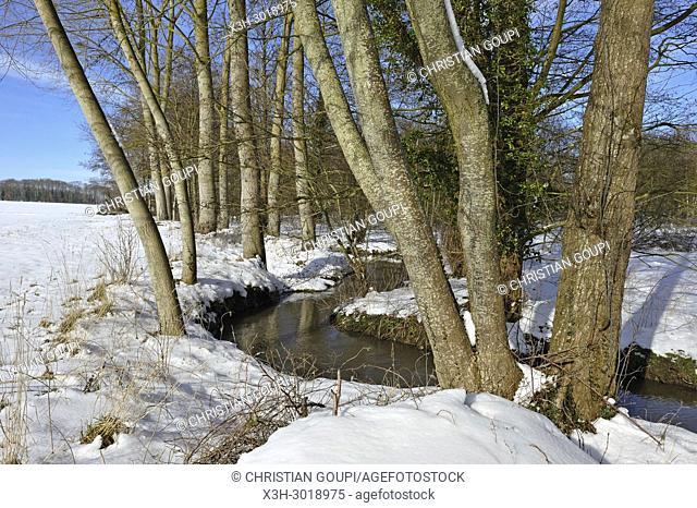La Maltorne river at Senantes, department of Eure-et-Loir, Centre-Val-de-Loire region, France, Europe