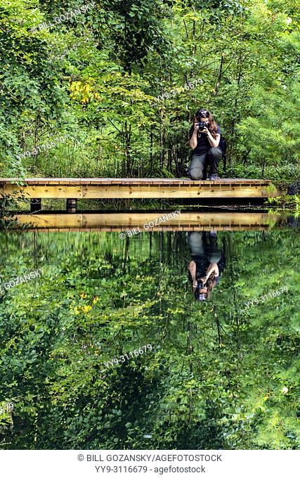 Photographer at Lake Alford - Three Lakes Trail - DuPont State Recreational Forest, near Brevard, North Carolina, USA