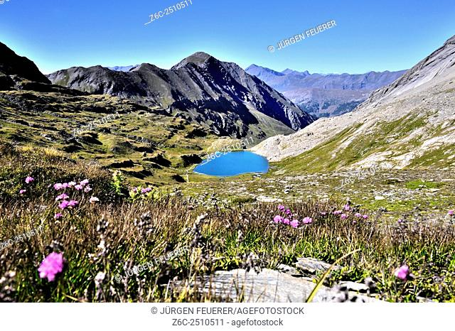 Mountain Lake Foréant, Hautes-Alpes, French Alpes, France