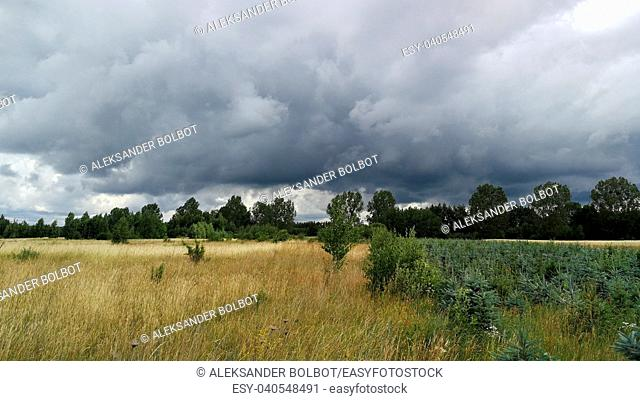 Stormy weather sky over field and distant forest trees, Podlasie Region, Poland, Europe