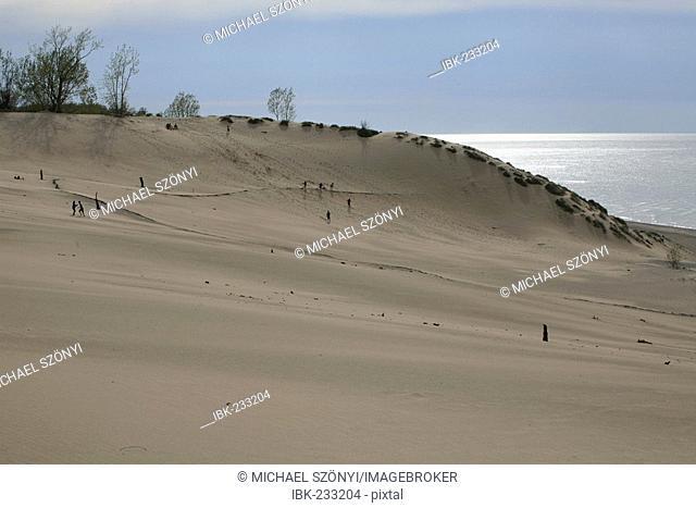 The Dunes of Mount Baldy, Indiana Dunes National Lakeshore, Lake Michigan, Indiana, USA
