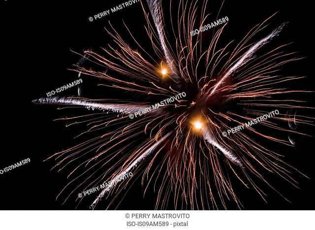 Colorful firework exploding in night sky