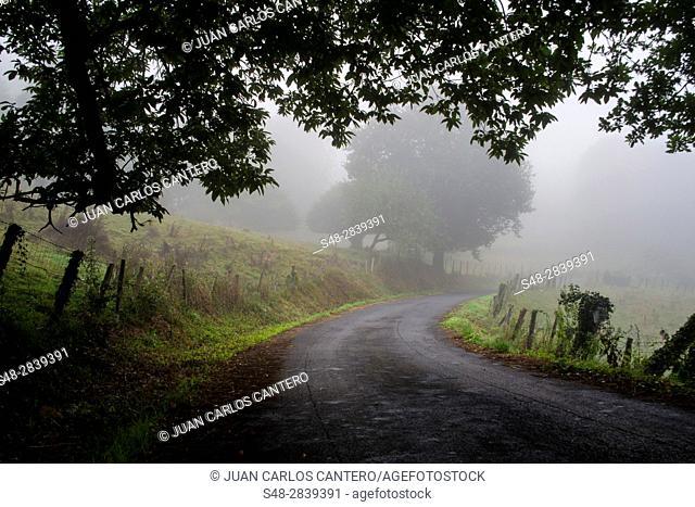 Rural setting in Cantabria. Spain. Europe