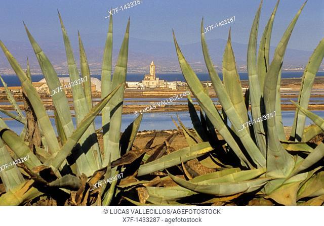 Almadraba de Montelba Saltworks and church Cabo de Gata-Nijar Natural Park  Biosphere Reserve, Almeria province, Andalucia, Spain