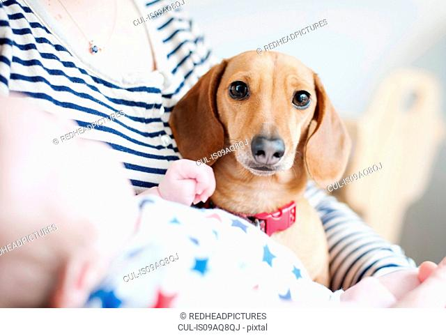 Woman holding baby and dog