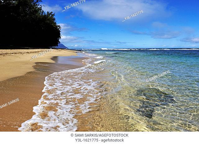Beach on Na Pali coast, Kauai Island, Hawaii Islands, USA