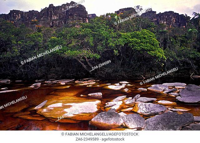Tea-colored stream on the Auyantepuy summit. Canaima National Park, Bolivar State. Venezuela