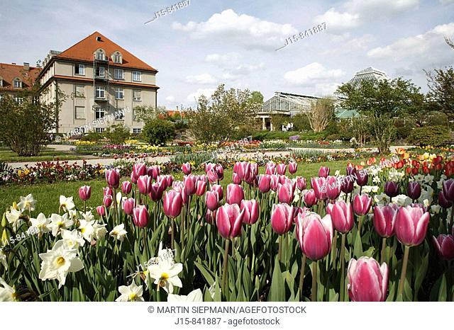 Botanical Gardens, Munich, Bavaria, Germany