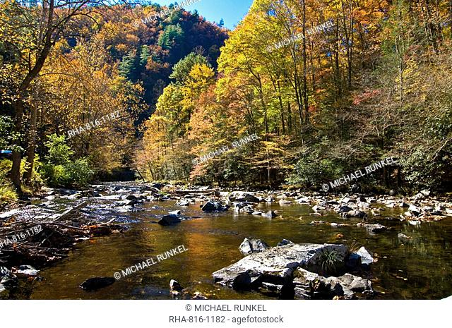 River and colourful foliage in the Indian summer, Great Smoky Mountains National Park, UNESCO World Heritage Site, Tennessee, United States of America