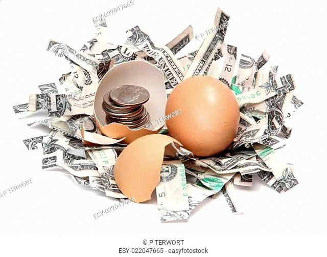 shredded dollars and eggshell with coins
