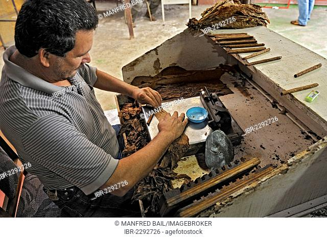 Rolling the covering leaf, cigar factory near San Ramon, Alajuela Province, Costa Rica, Central America