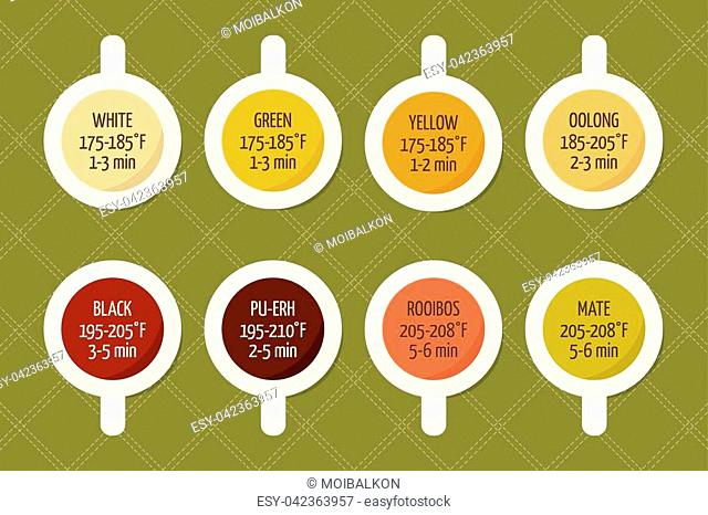 Tea varieties and brewing instructions. Steeping time and temperature. Types of tea in cups. Infographic poster