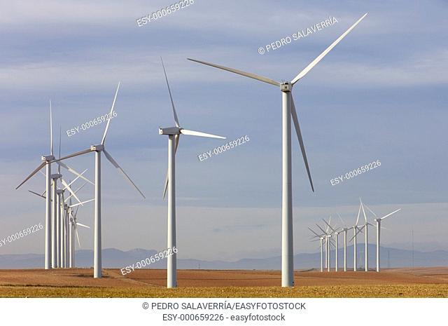 group of windmills at sunrise