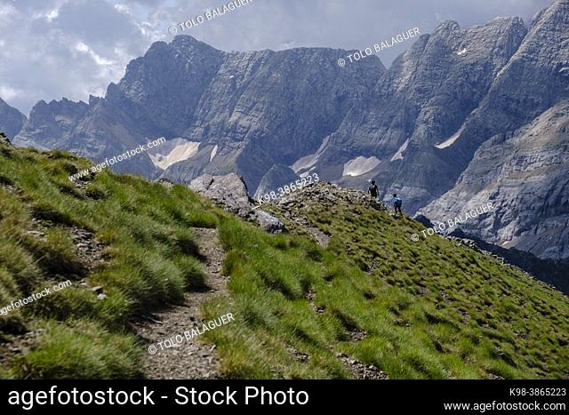 Hill of Hourqueta d'Allanz, Pyrenees National Park, Hautes-Pyrenees, France