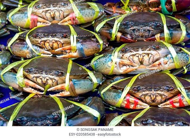 Fresh crabs on sale