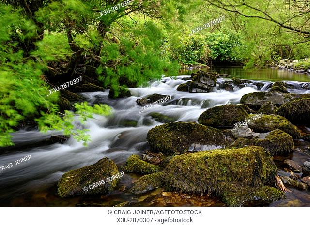 Badgworthy Water in the Doone Valley, Exmoor National Park near Malmsmead, on the Devon and Somerset border, England