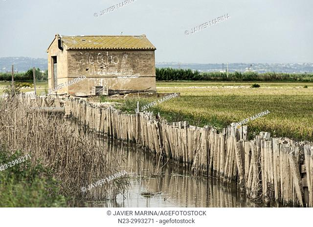 Canal and rice fields in the Albufera, Valencia, Spain