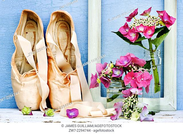 Hydrangea flowers with frame and ballet slippers