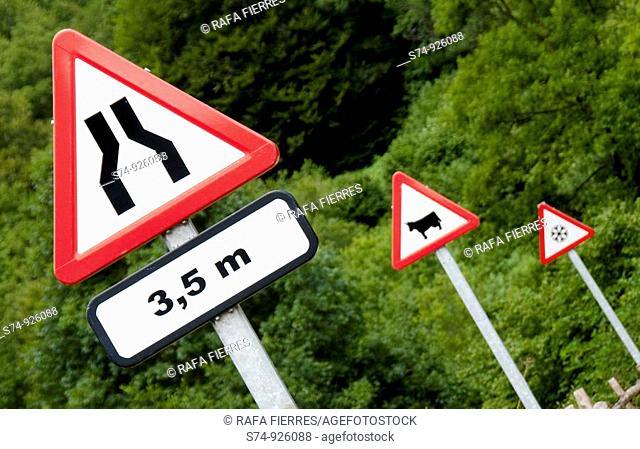 Señales de tráfico en la Selva de Irati, Navarra, Spain