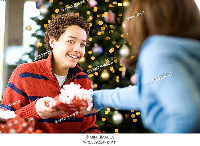 A boy and girl by a Christmas tree exchanging presents