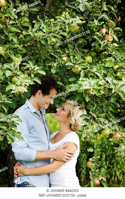 Couple embracing by apple tree