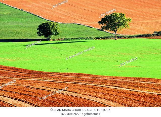 Lands of sowing, Balsac, North Aveyron, Midi-Pyrénées, Occitanie, France