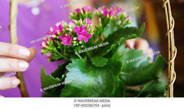 Female florist arraigning flower in wicker basket