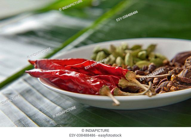 A mix of Indian spices