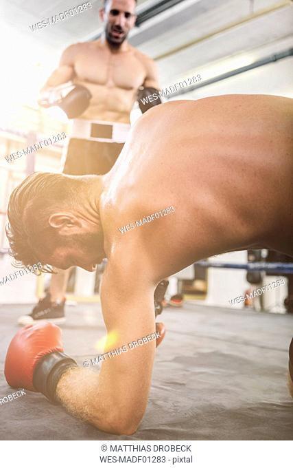 Boxer knocking down opponent