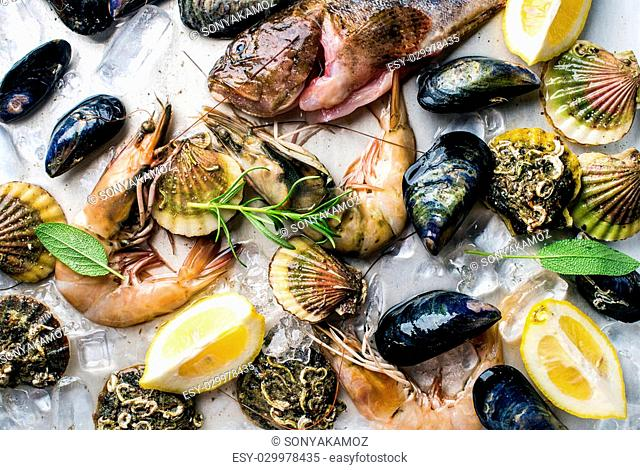 Fresh seafood with herbs and lemon on ice. Prawns, fish, mussels and scallops over steel metal background. Top view
